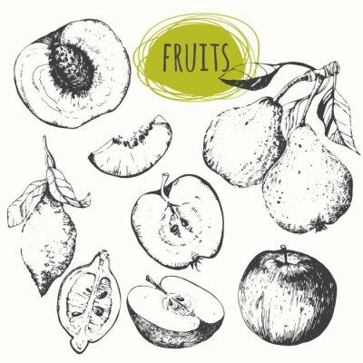 Naklejka Ustaw ręcznie rysowane jabłka, cytryny, gruszki, brzoskwini. Szkic owoce.