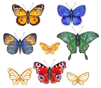 Naklejka ustawić kolorowe motyle