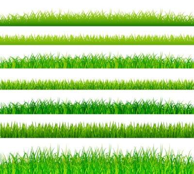 Naklejka ustawić zielone granice trawy