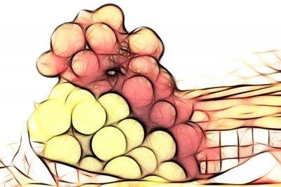 Naklejka uvas