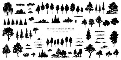 Vector illustration of different trees, shrubs and grass isolated on white background