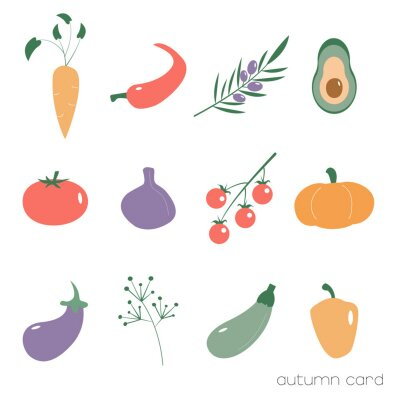 Vector illustrations of autumn vegetables.