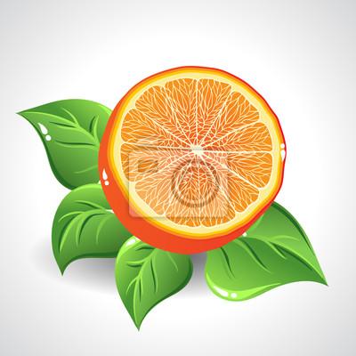 Vector pyszne pomarańczowy na białym tle z zielonymi liśćmi