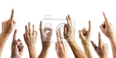 Viele Hände melden sich