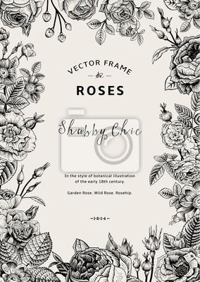 Vintage wektora ramki. Ogród i dzikie róże.