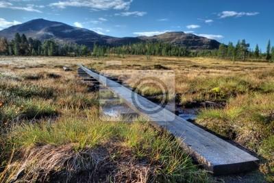 Wanderweg im Schwedischen Fjäll