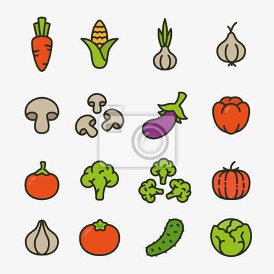 Warzywa Organiczne wegetariańskie Kolor Płaskie Kolekcja Icon Line. Marchewka, kukurydza, czosnek, cebula, grzyby, papryka, brokuły, dynia, ogórek, kapusta.