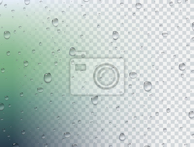 Water rain drops or steam shower isolated on transparent background. Vector pure droplets on window glass surface for your design.