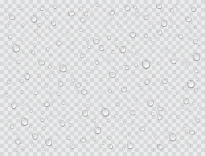 Water rain drops or steam shower texture isolated on transparent background. Vector pure droplets on window glass surface pattern