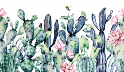 Naklejka Watercolor cacti, seamless border, hand drawn flower illustration. Perfect for floral design greeting card, blog, site, banner, wedding invitation. Isolated on white.  Cacti collection.