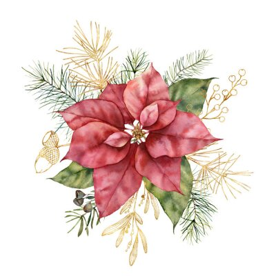 Watercolor Christmas bouquet with poinsettia and golden mistletoe. Hand painted holiday plant isolated on white background. Winter floral illustration for design, print, fabric or background.