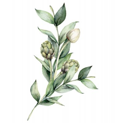 Watercolor floral bouquet with artichoke and white bud. Hand painted holiday composition with eucalyptus leaves isolated on white background. Spring illustration for design, print, fabric, background.