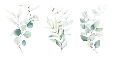 Naklejka Watercolor floral illustration set - green leaf branches collection, for wedding stationary, greetings, wallpapers, fashion, background. Eucalyptus, olive, green leaves, etc.