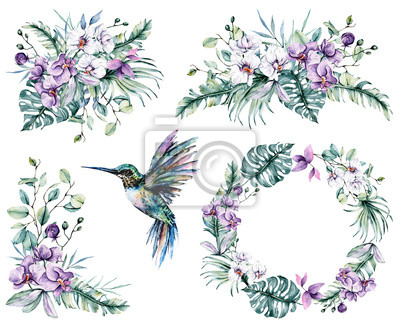 Watercolor flowers set, tropical flowers orchids, hummingbird and leaves for design wedding invitation, greeting, background, texture, wrapper, postcard, logo, etc. Hand painting.