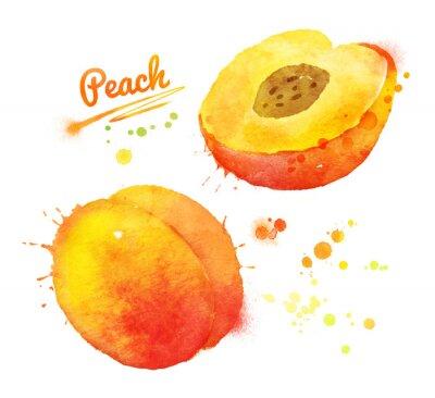 Naklejka Watercolor peach.