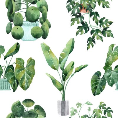 Naklejka Watercolor seamless pattern with tropical leaves and houseplants leaves. Greenery. Succulent. Floral Design element. Perfect for invitations, cards, prints, posters