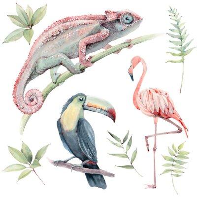 Naklejka watercolor tropical animals set.