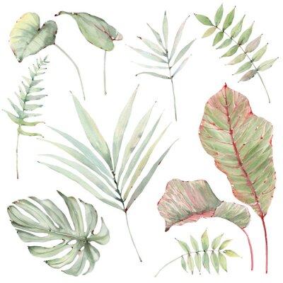 Naklejka watercolor tropical plants set.