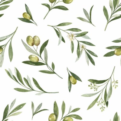 Naklejka Watercolor vector seamless pattern of olive branches and leaves.