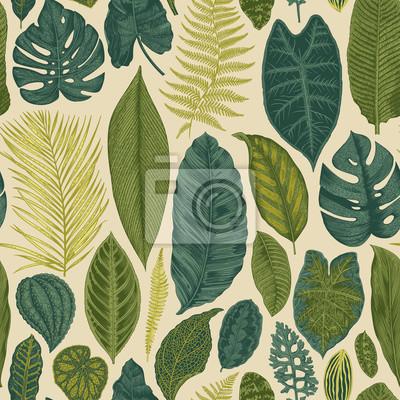 Wektor bez szwu rocznika kwiatowy wzór. Egzotyczne liści. Botaniczna klasyczne illustration.Green