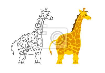Wektor na białym tle. Śliczna dziecko żyrafy ilustracja.