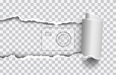 Naklejka Wektor realistyczne rozdartym papierze z rolowaną krawędzią na przezroczystym tle