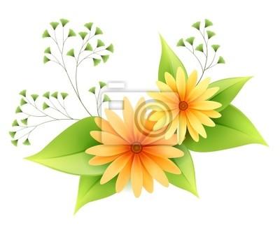 Wektor stokrotka kwiaty z liści samodzielnie na białym tle