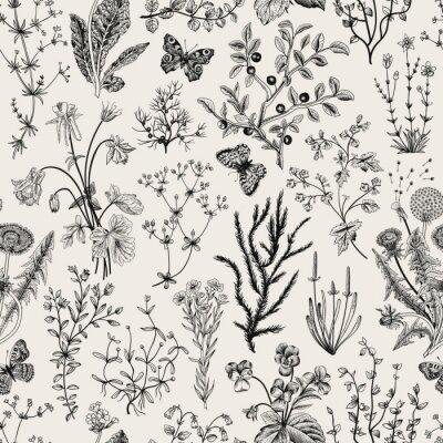 Wektor zabytkowe bez szwu kwiatowy wzór. Zioła i dzikie kwiaty. Ilustracje z roślinami grawerowanie stylu. Czarny i biały.