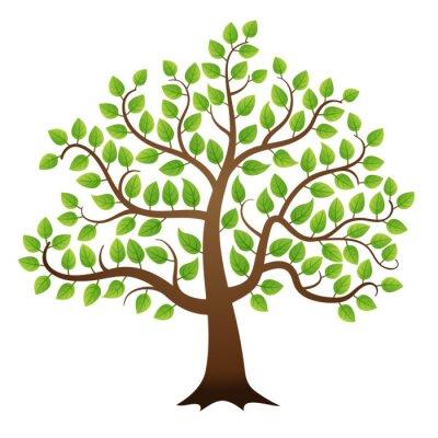 Naklejka Wektor zielone drzewo na białym tle
