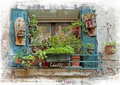 Naklejka Wenecja, stare małe okienka z roślinami