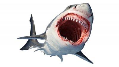 Naklejka White shark marine predator with big open mouth and teeth. 3D rendering