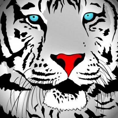 Naklejka White Tiger Portret