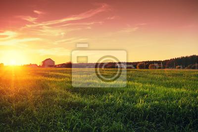 Naklejka Wiejski krajobraz z pięknym gradientowym wieczór niebem przy zmierzchem. Zielone pole i wieś na horyzoncie