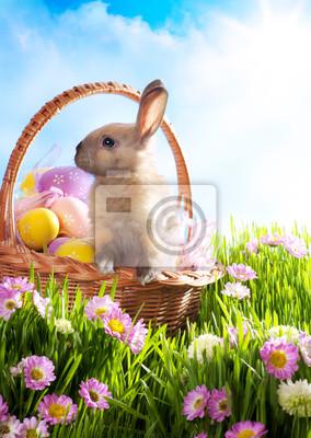 Wielkanoc Kosz z urządzonych jaj i Zajączek par