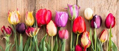 Naklejka wielokolorowe tulipany na drewnianym tle, baner, stare deski, wiosenne kwiaty, tulipany na tablicach