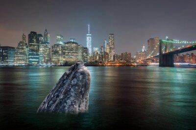 Naklejka Wieloryb na Manhattanie rzeki w nocy