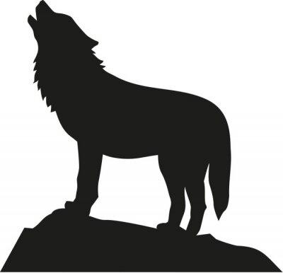 Naklejka Wilk stoi i wycie