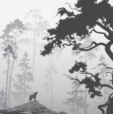 Naklejka wilk w lesie