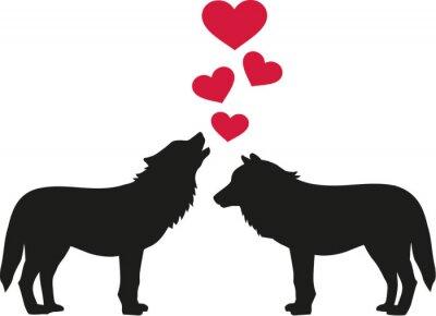Naklejka Wilki w miłości