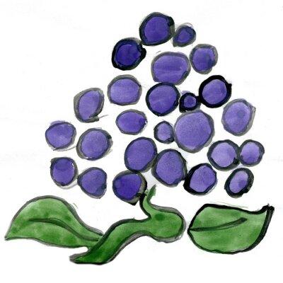 Naklejka Winogrona na białym tle