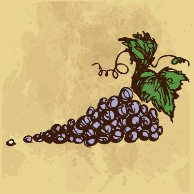 Naklejka Winogrona rysunek ręka