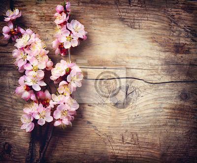 Wiosenne kwiaty na drewnianym tle