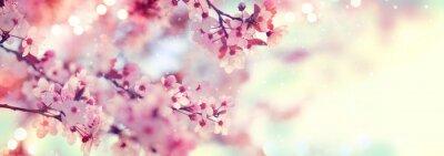 Wiosna granicy lub tła sztuki z różowy kwiat. Piękna przyroda sceny z kwitnące drzewa i flary słońca