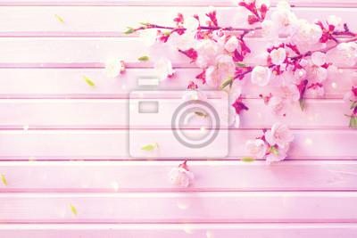 Wiosna kwiat na bia? Ym tle drewniane desek. Różowe kwitnące kwiaty morelowe