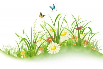 Naklejka Wiosna łąki z zielona trawa, kwiaty i motyle