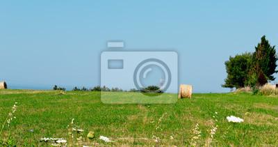 wiosna na Sardynii