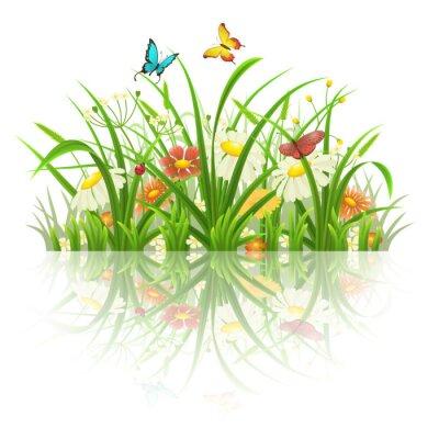 Naklejka Wiosna trawa, kwiaty i motyle z refleksji na białym