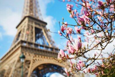 Naklejka Wiosna w Paryżu
