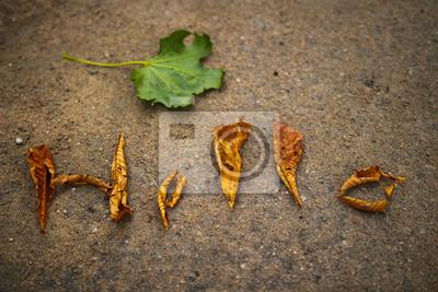 Witam dziś jesienią