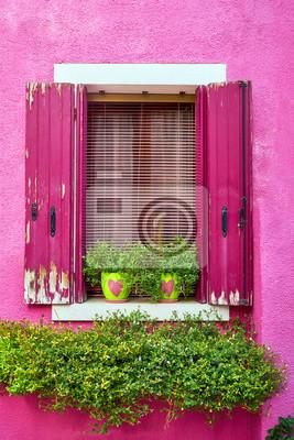 Włochy, Wenecja, wyspa Burano. Tradycyjne kolorowe ściany i okna z jasnoróżowymi okiennicami i kwiatami w doniczce. Skopiuj miejsce